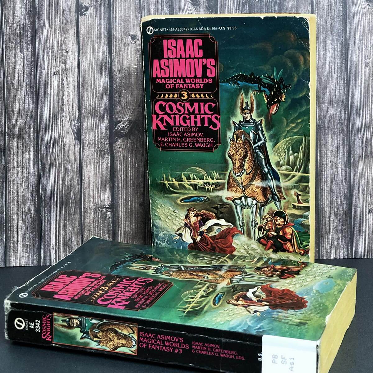 Cosmic Knights - book cover